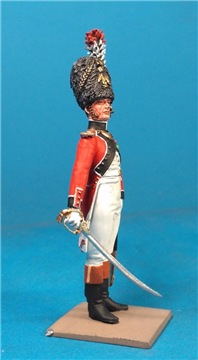 VID soldiers - Napoleonic swiss troops 74a040487b7at