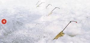 На рыбалку за корюшкой! 68c0bb9be2e3