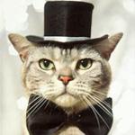 Аватары с животными - Страница 2 4fa316f7813d