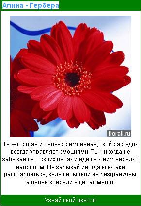 Узнай свой цветок 7cb7b808e07c