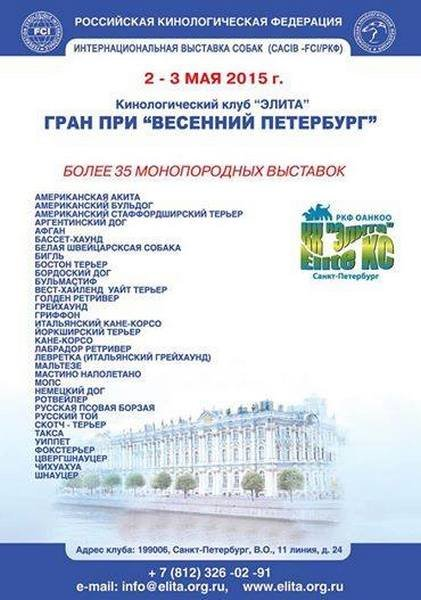 КАНЕ КОРСО ИТАЛЬЯНО ПОРТАЛ - Портал 48b308da82c2