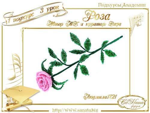 """Галерея Подкурсов. """"Роза"""" 202985bdf151t"""