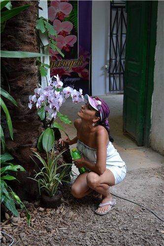 Выставка орхидей Никитского ботанического сада 56226967b031