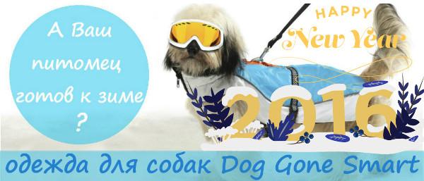 Интернет-магазин Red Dog- только качественные товары для собак! - Страница 3 3c63376cb71f