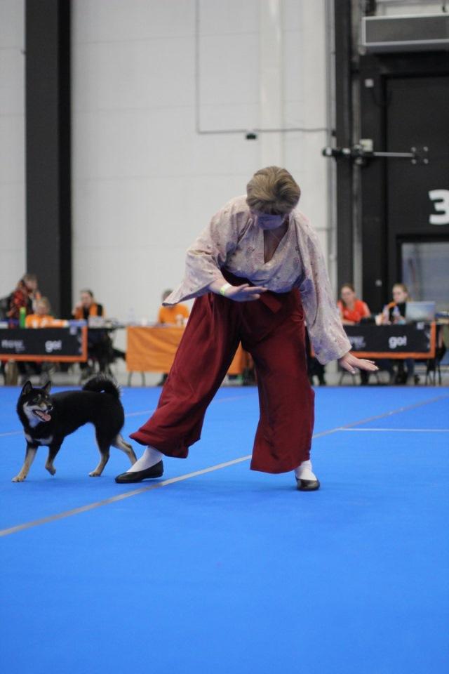 Танцы с собаками - Страница 4 7aecd0c8fee6