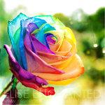 Аватары с цветами - Страница 2 6057f0d2187a