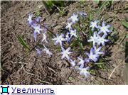 Весна идёт... 6ba7cc9b2cd8t