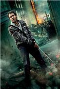Гарри Поттер и Дары Смерти: Часть первая / Harry Potter and the Deathly Hallows: Part 1 (Уотсон, Гринт, Рэдклифф, 2010) 700be4bef8ddt
