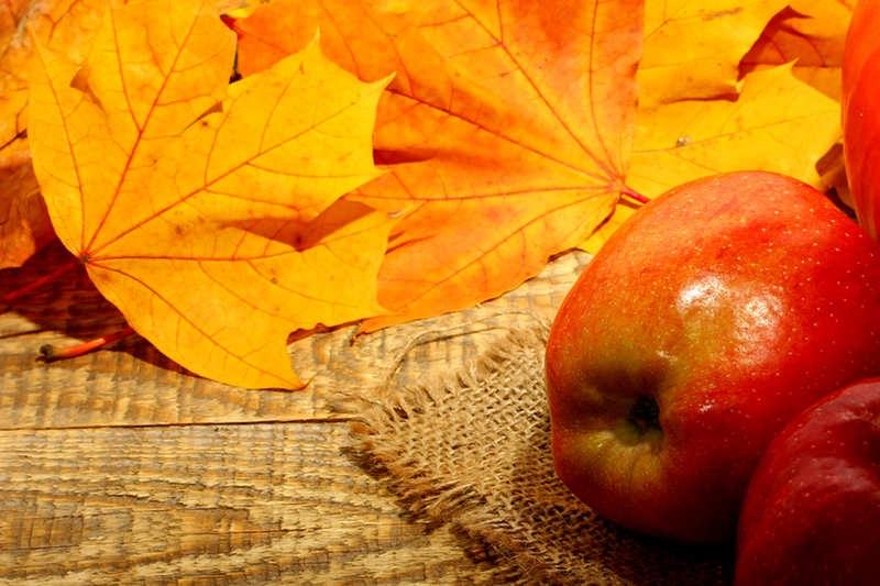 """КОНКУРС """"Осень: лучшее время года. """" D2052f5d975f"""