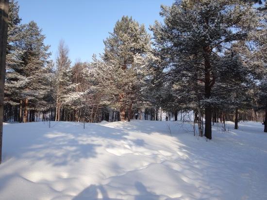Зимняя сказка на наших фотографиях - Страница 14 Fef5ff7b7c8d