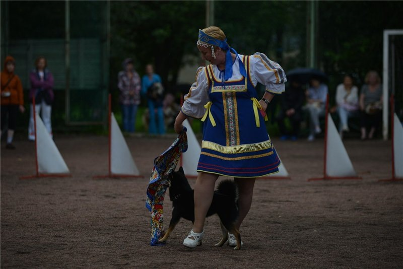 Танцы с собаками - Страница 3 3f7ab4c63ed9