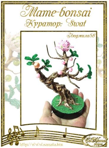 """Галерея """"Mame-bonsai"""" B0c1edd2cec8t"""