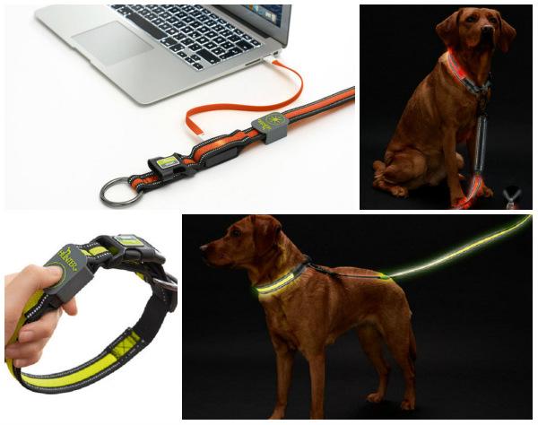 Интернет-магазин Red Dog- только качественные товары для собак! - Страница 7 Fd9b007e422c