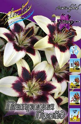 Сайт Мой мир цветов walasad.ru - Страница 4 899420b0daf3