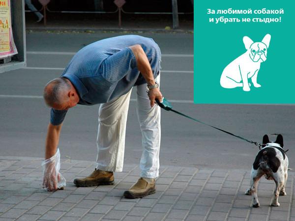 Интернет-магазин Red Dog- только качественные товары для собак! - Страница 4 468a2a33d5e5