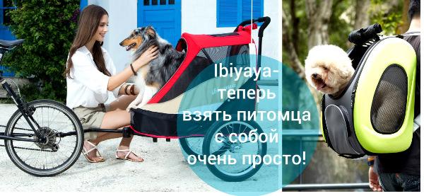 Интернет-магазин Red Dog- только качественные товары для собак! - Страница 3 Ade3e2fce537
