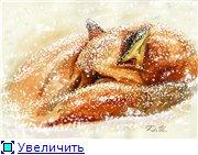 Животные, птицы и насекомые 895f1ad15aedt
