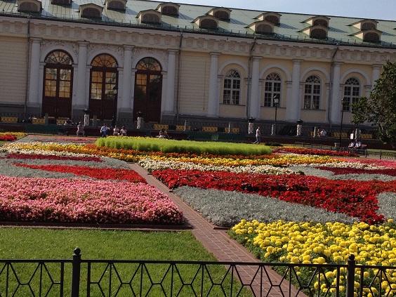 Выставка цветов - Страница 3 Ff879d405920