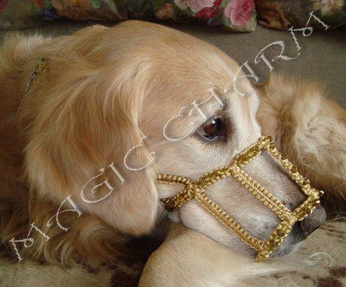 Magic Charm - ошейники, обереги, украшения и аксессуары для собак 1a1fd9b33a78