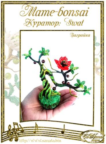 """Галерея """"Mame-bonsai"""" C1c7fe63c4cft"""