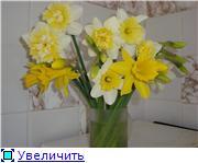 Весна идёт... 3881dcd260aat
