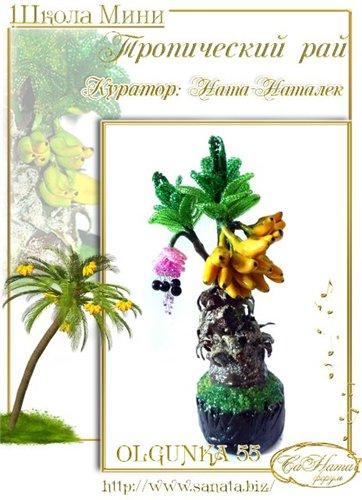 Выпуск работ Школы мини - Тропический рай 1b0b31615249t