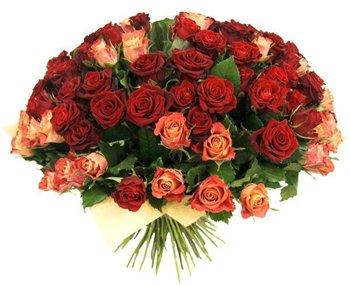 Поздравляем с Днем Рождения Светлану (Мура) Abba1b2ce9c1t