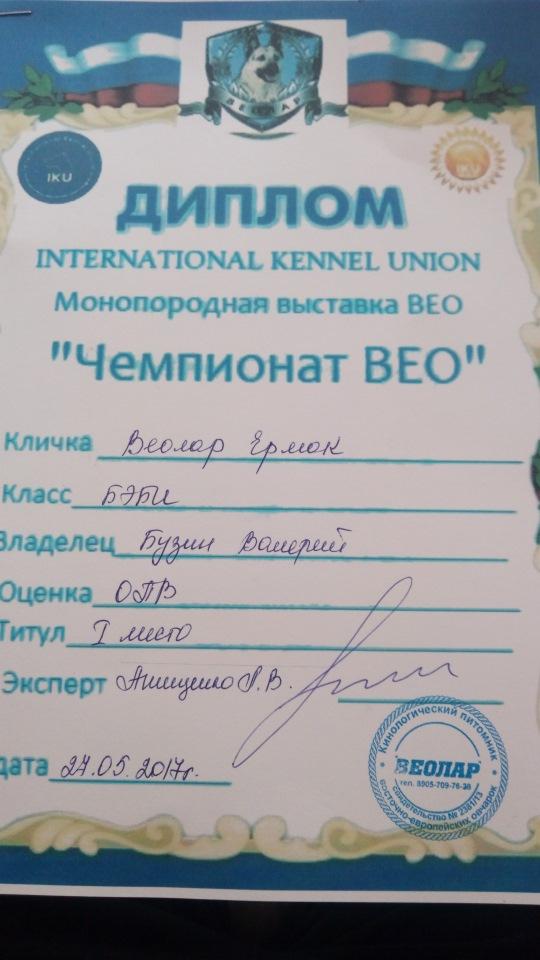 ВОСТОЧНО-ЕВРОПЕЙСКАЯ ОВЧАРКА ВЕОЛАР ЕРМАК - Страница 2 Fec889536b39
