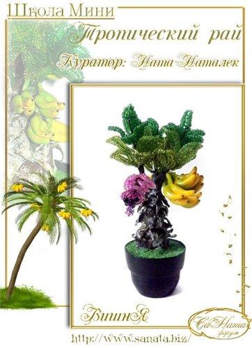 Выпуск работ Школы мини - Тропический рай 51e4b87ba2a0t
