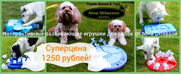 Интернет-магазин Red Dog- только качественные товары для собак! - Страница 3 C717fff27446
