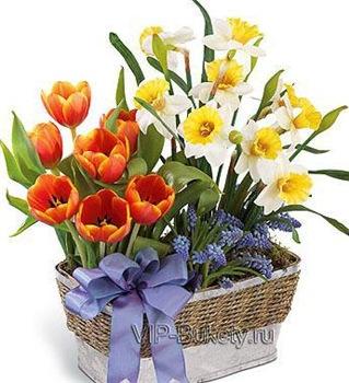 Поздравляем с Днем Рождения Татьяну (Татьяна По) 38d53c2f6457t