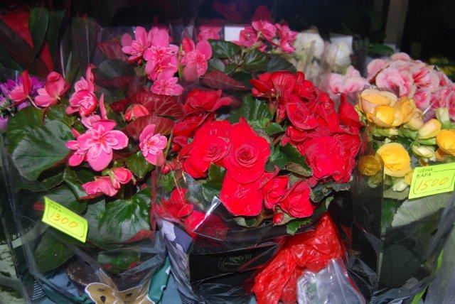 Международная выставка цветов AstanaFlorExpo - 2011 16053a4e2da5