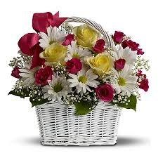 Поздравляем с Днем Рождения Аллу (АллаЮ) 4cb130201330t