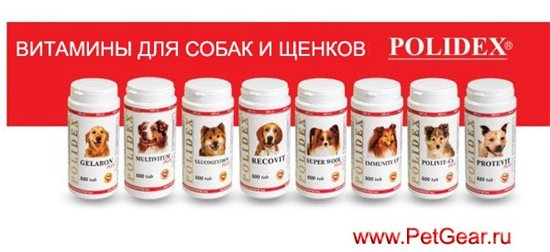 Интернет-зоомагазин Pet Gear - Страница 8 2e0c54fac07f