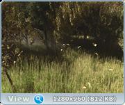 Cinema 4D +Corona render 57a3d179c6f8