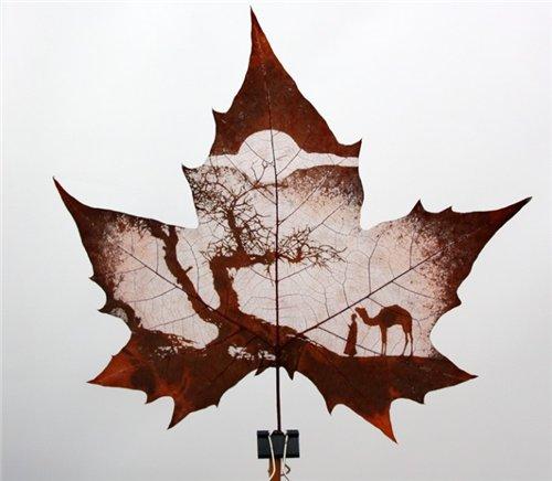 Креатив на кленовых листьях 1313dfded381