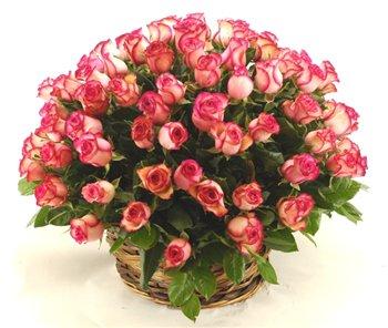 Поздравляем с Днем Рождения Ольгу (Олефи) F3a167704a37t