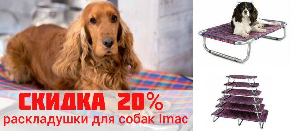 Интернет-зоомагазин Red Dog: только качественные товары для  - Страница 11 2d28dedde9a8