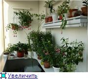 Балконная Идиллия или Драйв 072090e8d7f8t