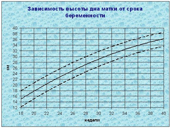 Зависимость высоты дна матки от срока беременности A20d6cedd64e