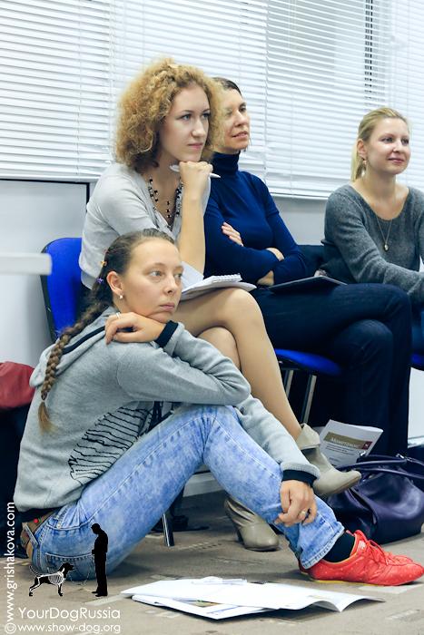 Джерард О'Ши - семинары по хендлингу и ринговой дрессировке в России 54a50b1989f7