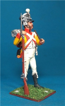 VID soldiers - Napoleonic swiss troops D77a0119a8fct
