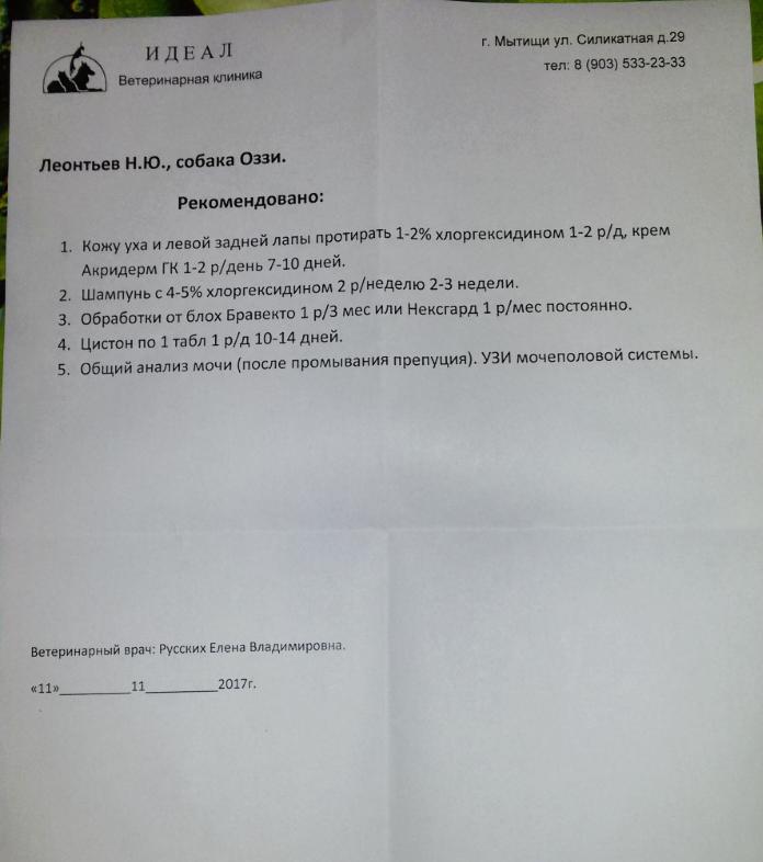Москва, Оззи, Кобель, 16.09.2013 - Страница 5 Cca53bca7f58