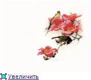 Цветы, букеты F750d16737b3t