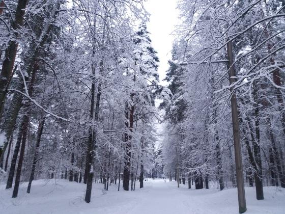 Зимняя сказка на наших фотографиях - Страница 14 2a0307980b26