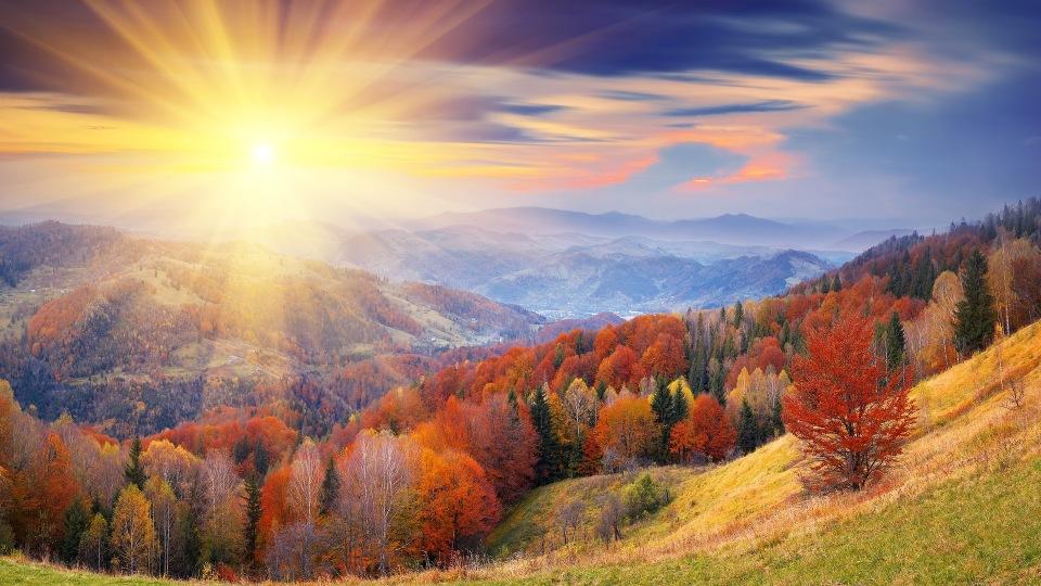 """КОНКУРС """"Осень: лучшее время года. """" 5ff0df3277b0"""