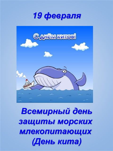 19 февраля - Всемирный день защиты морских млекопитающих (День кита) Aa383f741df5