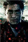 Гарри Поттер и Дары Смерти: Часть первая / Harry Potter and the Deathly Hallows: Part 1 (Уотсон, Гринт, Рэдклифф, 2010) Df3cefc8927ct