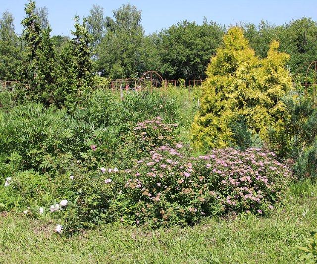 Экскурсия по Ботаническому Саду Ae4fb55aa2d6