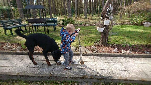 Наши собаки, друзья и гости, кот Мензурка - Страница 30 814534d922f6